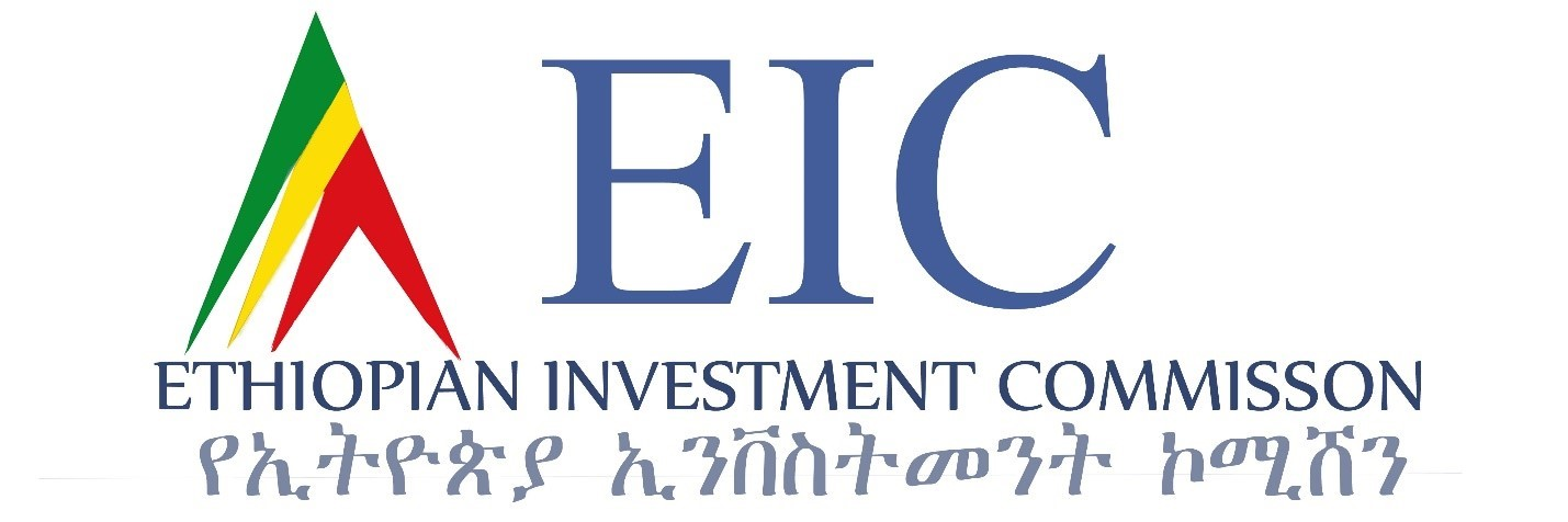 Ethiopia Amends Investment Law to Encourage Private Sector